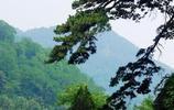 泰山:泰山微型地貌景觀