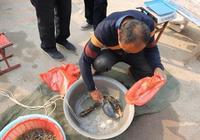 在農村集市買魚,自己拿魚回家做,魚販為啥就會不賣了?