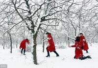鄧麗君寶麗金精選金曲—《冬之戀情》