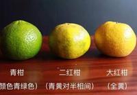 青柑、二紅柑、大紅柑哪種柑普茶最好?