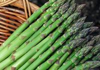 蘆筍的生物學性狀—種植蘆筍與水的關係