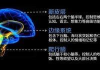 人類群體性意識進化史:宗教、哲學、科學,以及未來某種認知模式