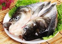 花鰱魚的食用禁忌 花鰱魚怎麼處理