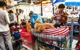 實拍蘭州夜市寵物街:待售毛孩裝睡像假狗,金毛眼神憂鬱盼領走