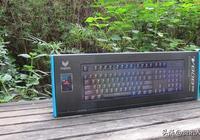 手感不錯還有光,談談雷柏V808RGB紅軸機械鍵盤的碼字體驗