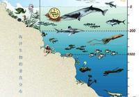 大西洋海底有沒有神祕物種?