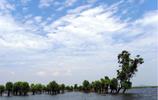 中國第二大淡水湖——洞庭湖