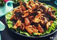 健康營養下飯的素菜菜譜,孜然香菇,比肉好吃的養生食譜