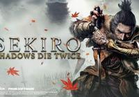 從《只狼》看日本的忍者文化之一:忍者的起源