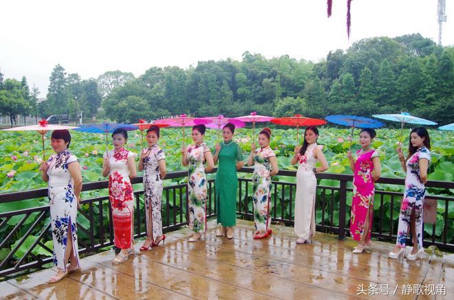 """衡陽南湖公園迎來醉美荷花季,引眾多遊客冒雨前來賞""""雨荷"""""""