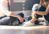 """《一條狗的使命2》票房破億 劉憲華""""好萊塢電影男主""""首戰告捷"""