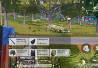 《刺激戰場》有5種物資不能撿!高手看到圖三掉頭就跑