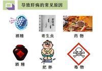 肝病=傳染病嗎?