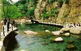 在青島的你如果不知道去哪裡春遊最合適,不妨試試這個地方!
