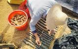 山村不種稻谷,村民們在田裡鋪滿地毯,看看咋回事