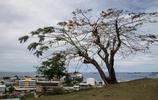 所羅門群島遊記,神奇的島嶼