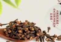 常用香料大全14——丁香(公丁香、子丁香)