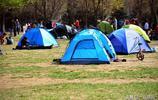 北京城區有個大園子,週末支起帳篷,可以在裡面吃喝玩樂休閒放鬆