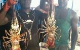 非洲漁船出海記,龍蝦海蔘吃到吐,見了水果比親人還親