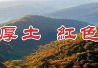 2019年文化和自然遺產日甘肅文博活動在慶陽開幕