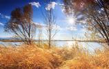 風光圖集:秋遊野鴨湖