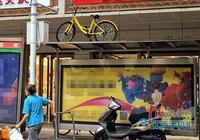 """要上天?共享單車""""飛""""上站臺(圖)-江西新聞網-中國江西網首頁"""
