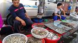 菜市場現海鮮銷售難,鮮活的皮皮蝦、養殖大蝦便宜也不好賣