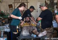 國際醫療組織的美女志願者,在最前線為伊拉克人提供援助