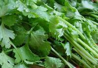 """網評:最""""難吃""""的7種蔬菜,都愛吃是""""真吃貨"""", 第6種爭議很大"""