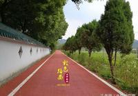 浙江紹興茶園彩色路面,環保生態綠道
