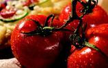 西紅莓?!西紅柿和草莓的雜交品種你見過嗎?