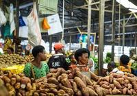 為啥非洲缺少的不是食物,而是中國人?逛一圈非洲菜市場就明白了