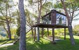神祕而美麗的樹屋,真正的綠色建築