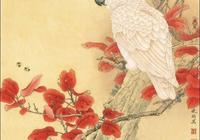 李曉明《紅葉鸚鵡》步驟圖(含詳細文字解釋)