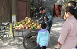 大爺每天照顧上百隻猴子 為猴子蒸窩頭 猴子比人吃的都好