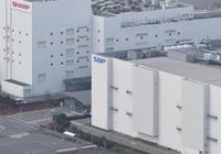 夏普與富士康正考慮在美國建電視面板工廠