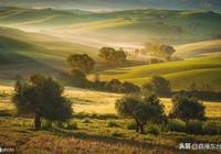 《橄欖樹》是齊豫演唱的一首歌曲,演唱起來很動聽