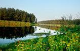 旅遊記錄:靜靜的淝河