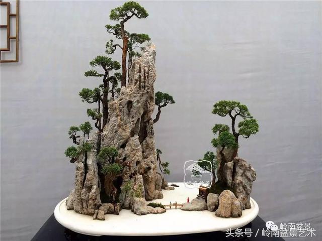 水旱盆景,最美的盆景藝術表現形式