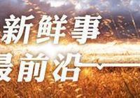 青海互助縣:地膜蠶豆的田間管理