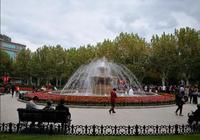 上海喬灌木種類最多的公園,140多種1萬多株,法國式園林風格
