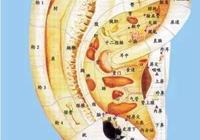 耳朵裡的養生祕密!這5套耳穴操不僅防病還能美容
