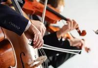 小提琴、中提琴和大提琴有什麼區別?