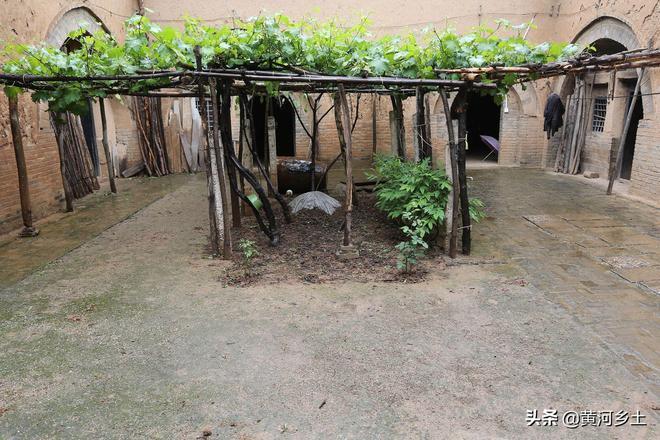 連續3天大雨,看農村76歲老人住的46年地坑院子如何排水