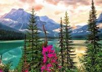 去加拿大留學的12個理由,你心動了嗎?