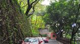 隨拍公園 - 重慶 枇杷山公園