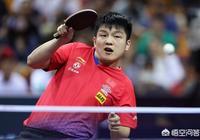 又見11-0!樊振東4比1淘汰皮斯特耶,成功晉級男單八強,怎麼評價他的表現?