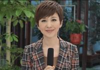 41歲央視女主播歐陽夏丹近照好年輕,與10年前相比幾乎沒變