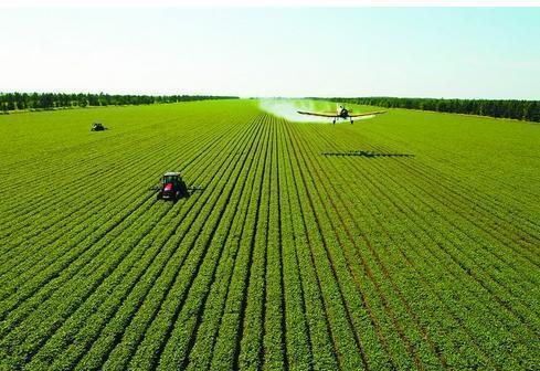 農村如何發展農村經濟?