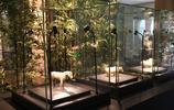 南京第一博物館——六朝博物館